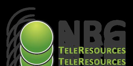 NRG TeleResources Inc